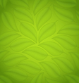 Green leaves texture eco friendly background vector image