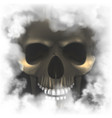 realistic skull in a smoky frame vector image