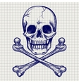 Skull and crossbones ball pen sketch vector image vector image