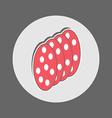 Slices of Salami icon vector image