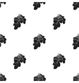 Acorns icon in black style isolated on white vector image