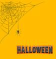 corner decoration hanging spider web halloween vector image vector image