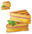 grilled cheese sandwich icon vector image