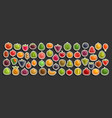 set fresh fruits vector image