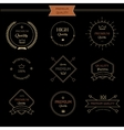 set premium quality vintage style elements vector image