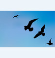 silhouette a seagull in blue sky vector image