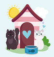 cute cats with house and canned fish in grass vector image vector image