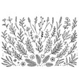 hand drawn set tree branches vector image vector image