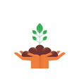 hands with green plant for nature care concept vector image vector image