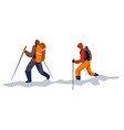 mountain hiking group with backpacks and trekking vector image