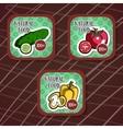 VegetablesLabels vector image