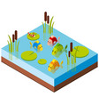 3d design for pond scene with fish and dragonfly vector image vector image
