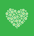 a heart of daisies vector image