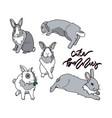 cute grey bunny vector image vector image