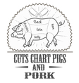 Cuts chart pigs vector image vector image