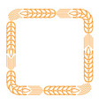 square frame with border made of ears of wheat vector image vector image