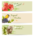 Summer tropical banners vector image