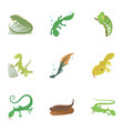 types of reptile icons set cartoon style vector image vector image