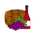 wine house design vector image