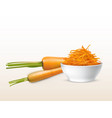 3d realistic carrots sliced orange vector image vector image