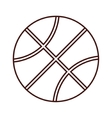 basketball ball sport vector image vector image