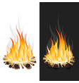 burning bonfire with wood vector image