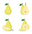 pear whole fruit slice vector image
