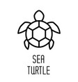 sea turtle line icon vector image