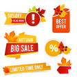 autumn offer sales badges and stickers for vector image vector image