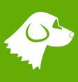 beagle dog icon green vector image vector image