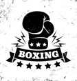 boxing new vector image vector image