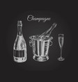 champagne glass bottle bucket hand drawing vector image vector image