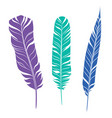 elegant feathers set silhouette of three plumes vector image vector image