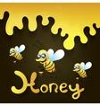 sweet delicious honey vector image
