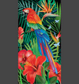 background with tropical jungle plants and parrot vector image vector image