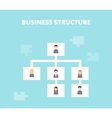 business structure and hierarchy company vector image