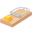 Cartoon free cheese in a mousetrap vector image