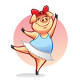 cartoon pig ballerina vector image vector image