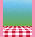 empty picnic tablecloth outside vector image vector image