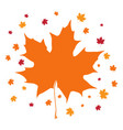 isolated autumn leaf thanksgiving day vector image vector image