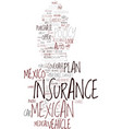 mexican car insurance the best way to buy it text vector image vector image