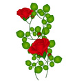 Rose flower plant vector image