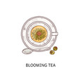 Blooming tea - top view glass cup with open