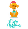 merry christmas greeting card dog knitted sweater vector image vector image