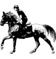 young horseman riding elegant horse sketch vector image vector image