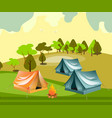 camping with summer forest vector image vector image