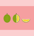 durian with cut piece set in flat style vector image vector image
