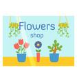 Flat design flowers shop facade icon store modern vector image