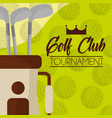 golf club on bag balls background vector image vector image