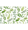 seamless pattern of eucalyptus leaves greenery